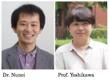 Paper by Dr. Nunoi and Prof. Yoshikawa Given an Outstanding Research Paper Award by the Japanese Psychological Association