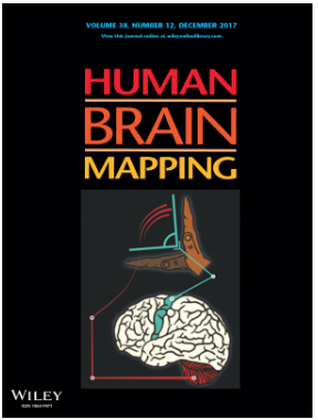 Paper by Dr. Sato et. al. Published in Human Brain Mapping