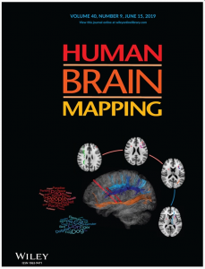 A Paper by Assoc. Prof. Sato et al. Published in <span>Human Brain Mapping</span>